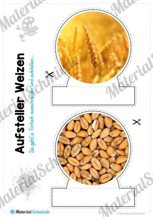 MaterialPaket: Getreide Weizen (Vorschau 08)