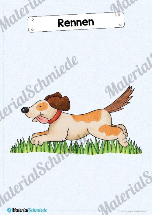 35 Flashcards Hunde & Hunderassen (Vorschau 07)