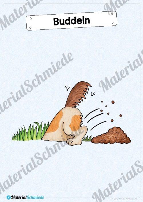 35 Flashcards Hunde & Hunderassen (Vorschau 08)