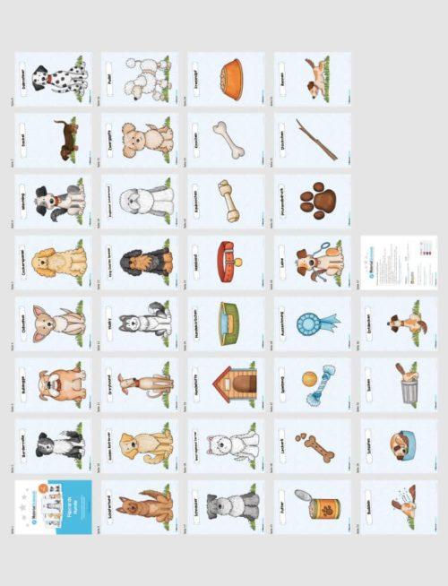 35 Flashcards Hunde & Hunderassen (Überblick)